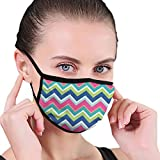 Traditional Vertical Borders Inspired By Primitive Art Ikat Style Ancient Unisex Face Mask Reusable...